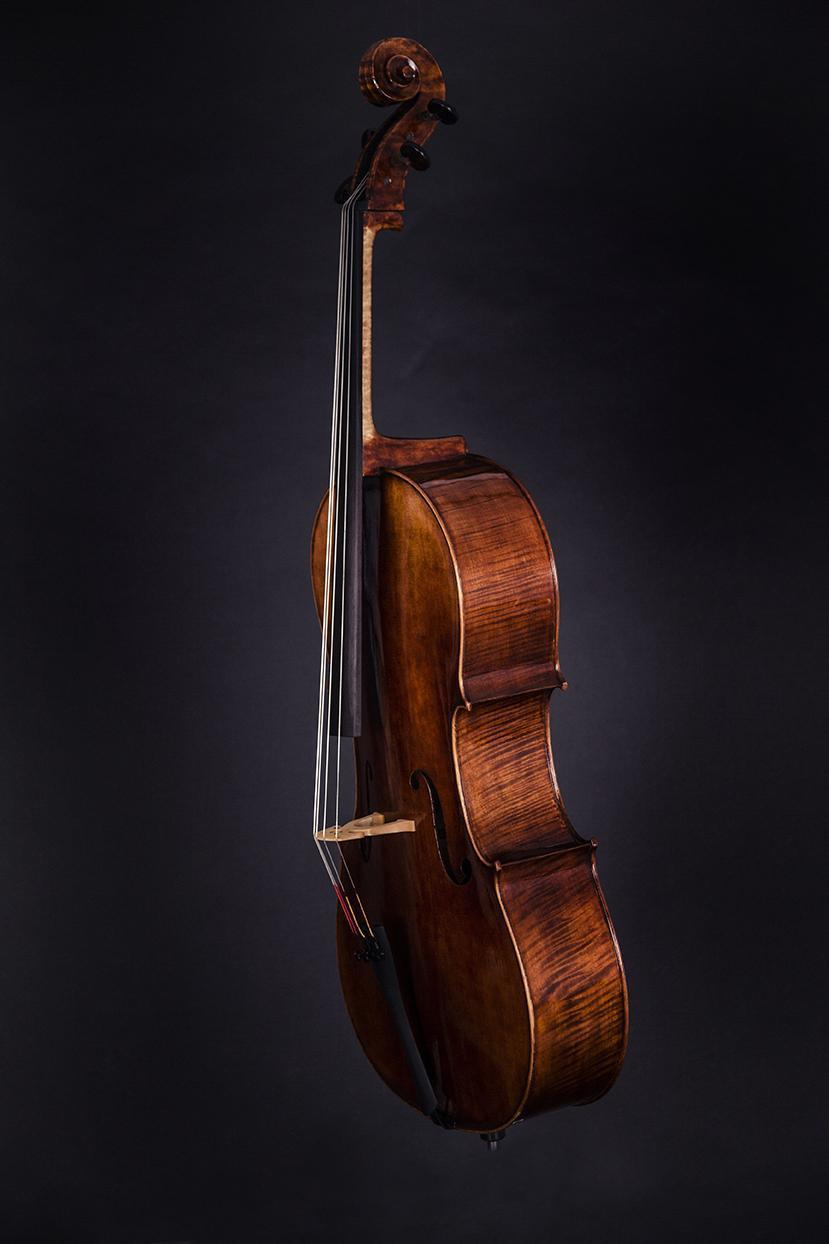 Violoncello Gold